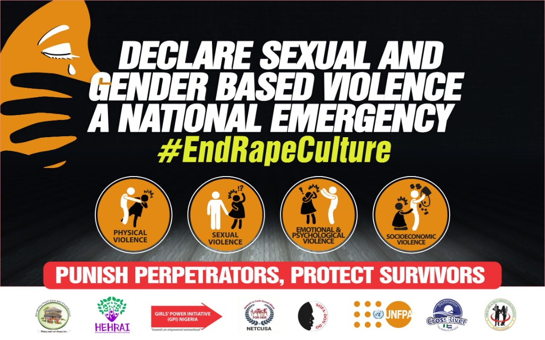 Declare Sexual And Gender Based Violence A National Emergency